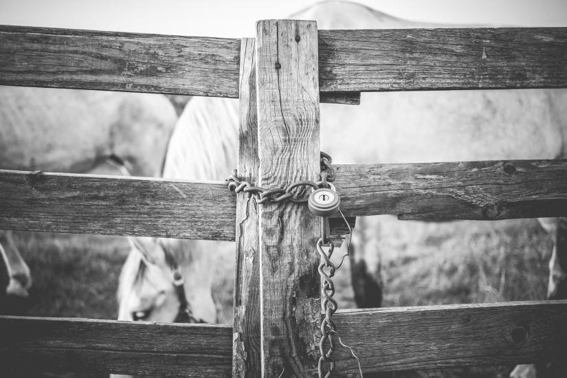 padlock fence